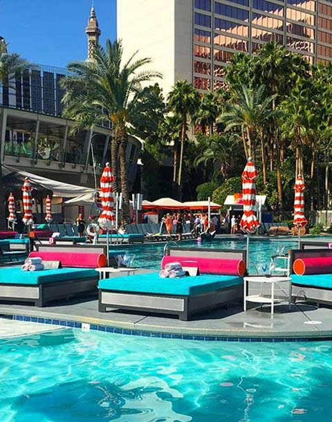 Flamingo Go Pool Daybed Bottle Service